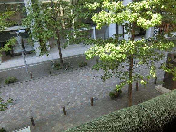 丸の内 mikuni ミクニ マルノウチ 窓側席 眺望